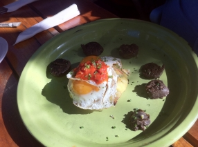 Fried egg on potato fritter with salsa black pudding